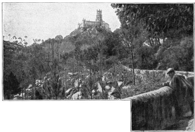 De schaduwrijke lanen bij het park van Pena.